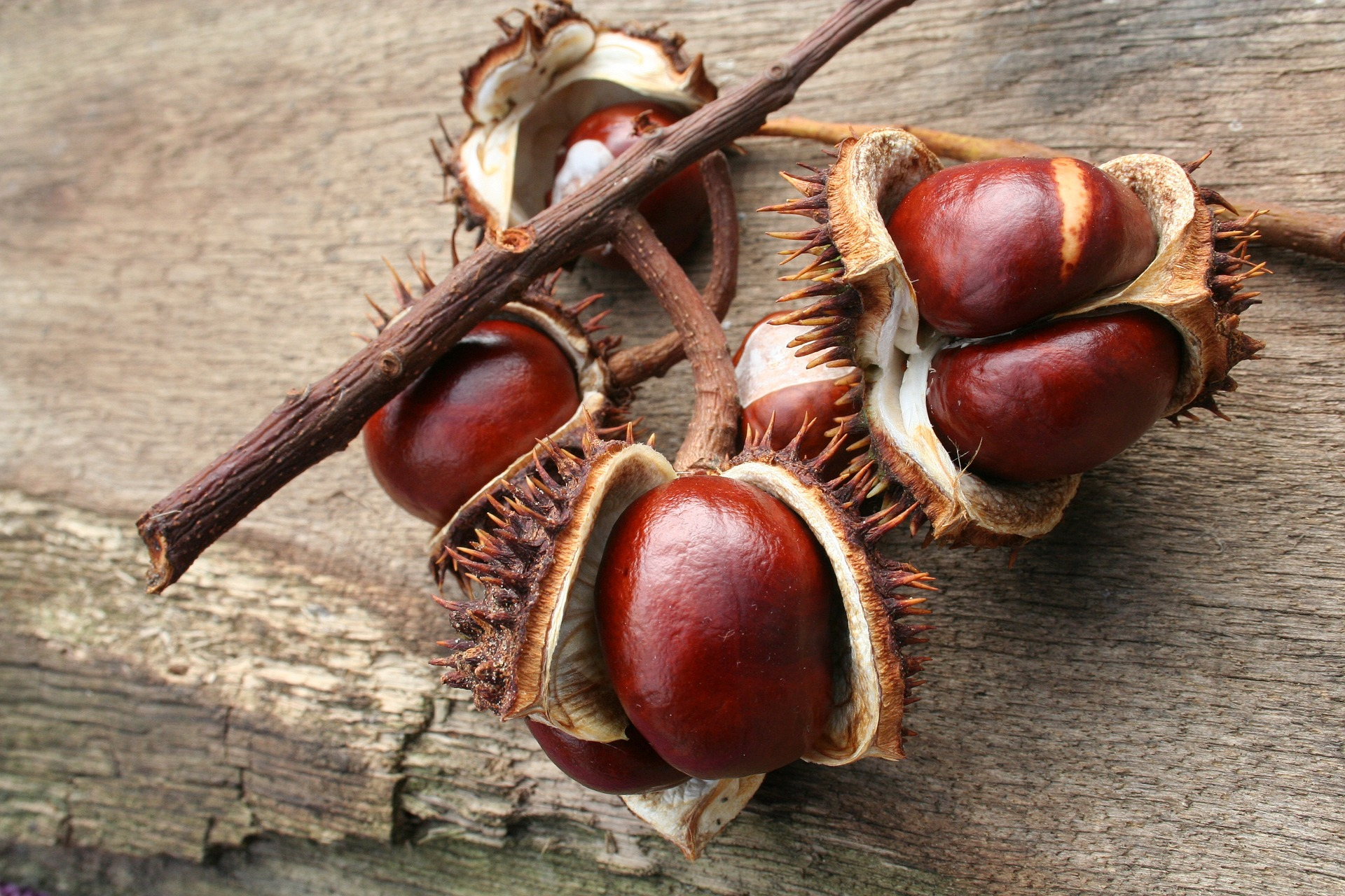 Roasted Chestnuts and Salted Caramel Dip – Winter Warmer Recipe