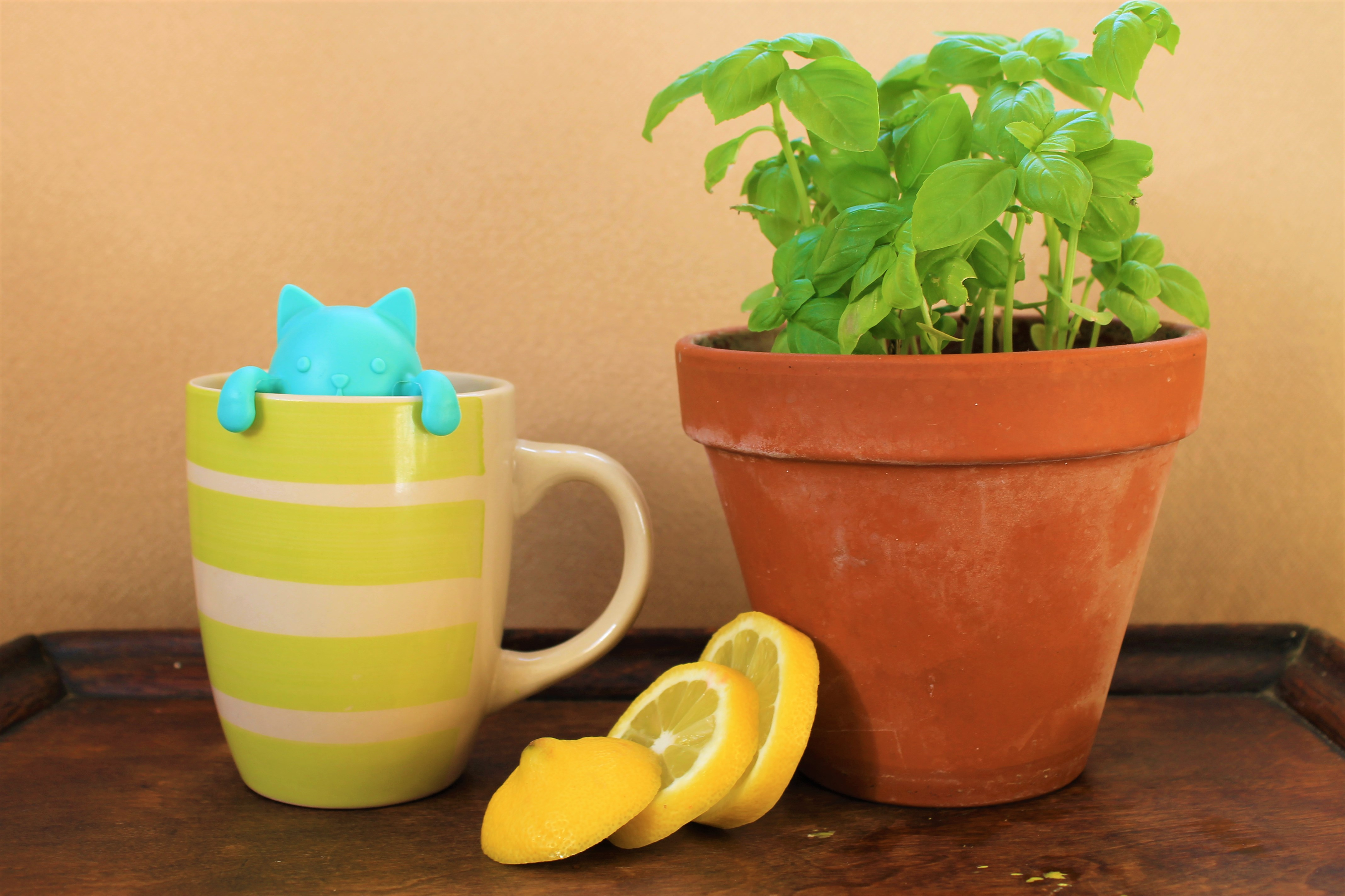 Tea Doesn't Have to Be Mundane. 9 Exciting Tips