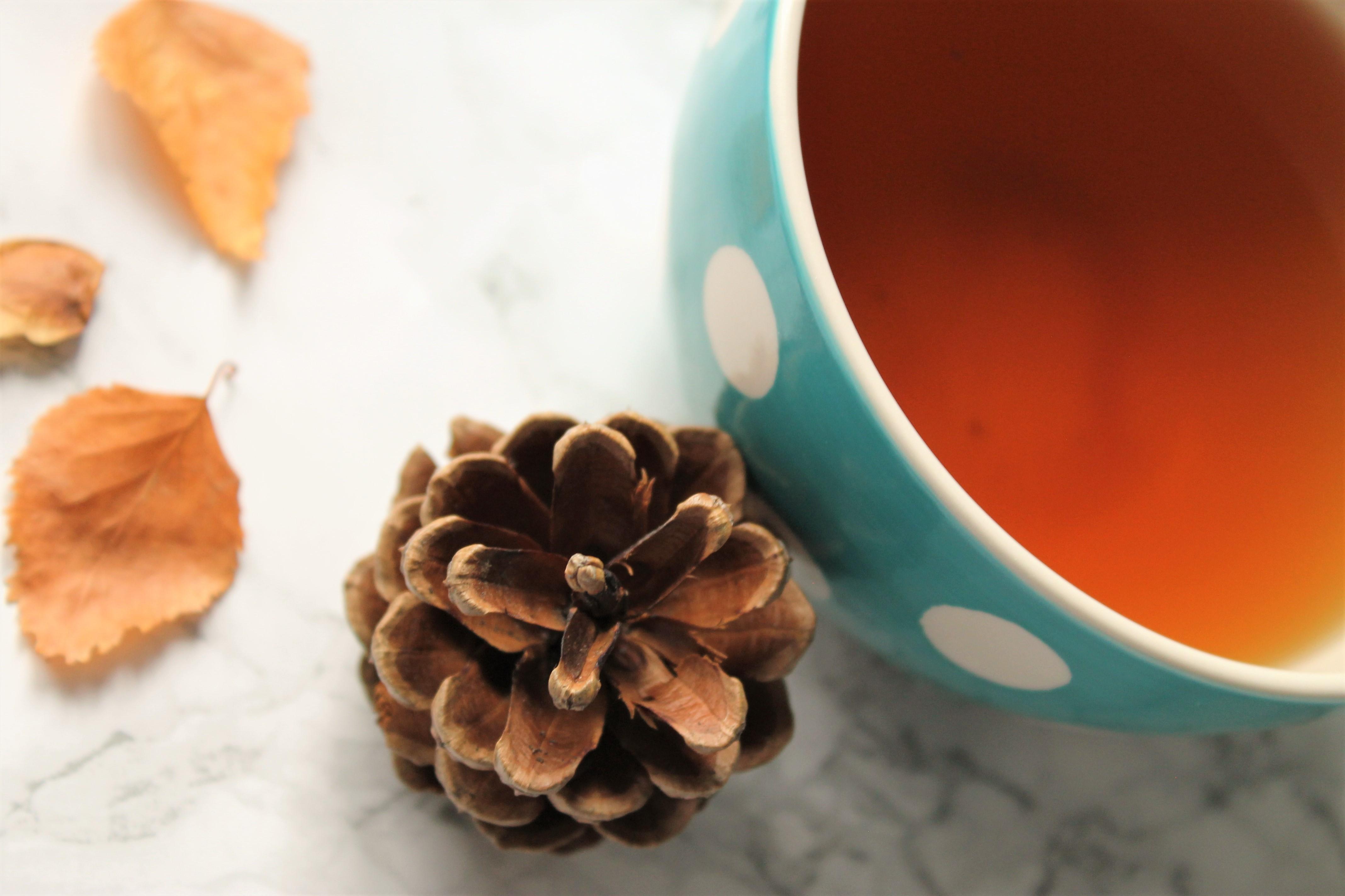 pinecone polkadot teacup black ginger tea