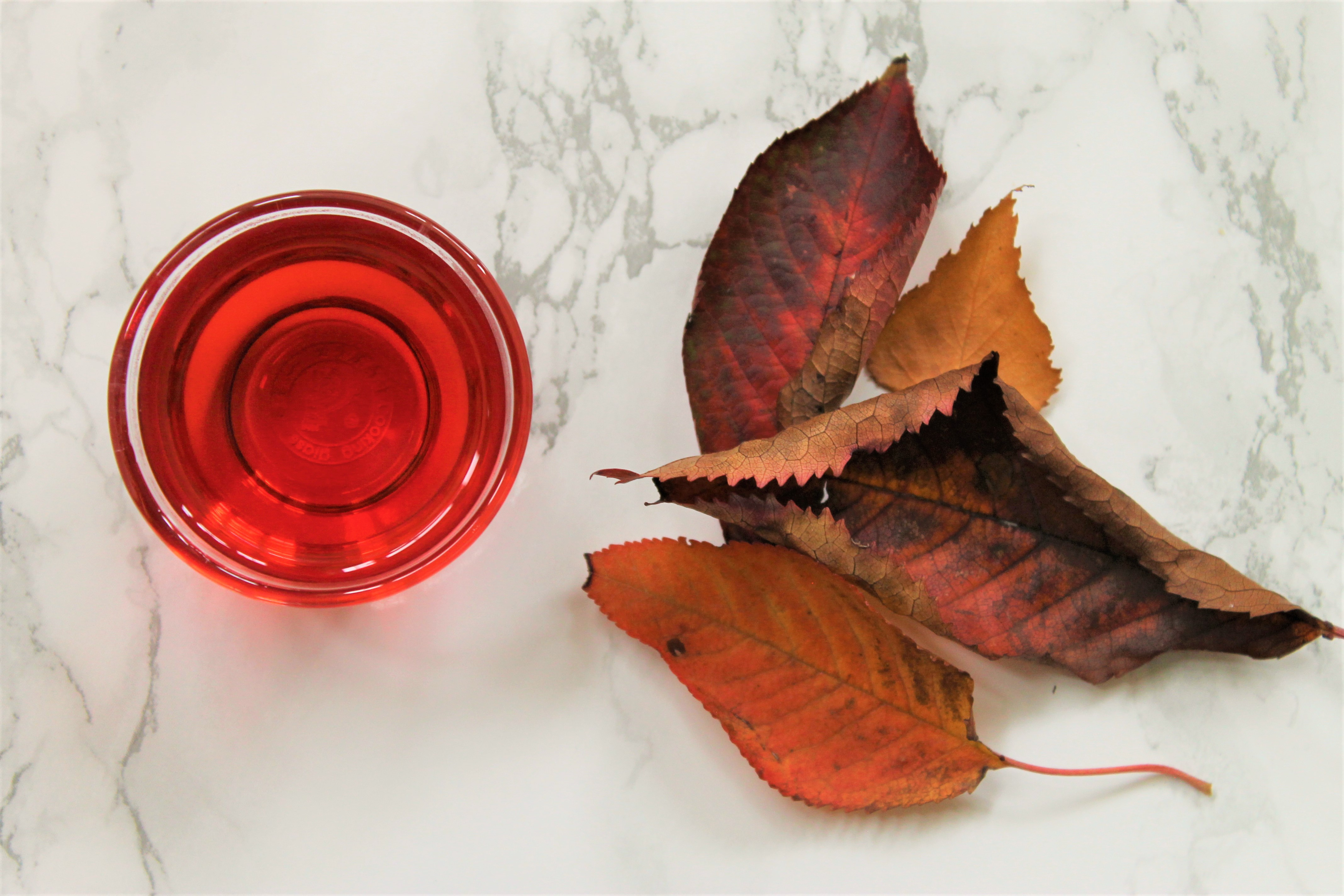hibiscus herbalism tea