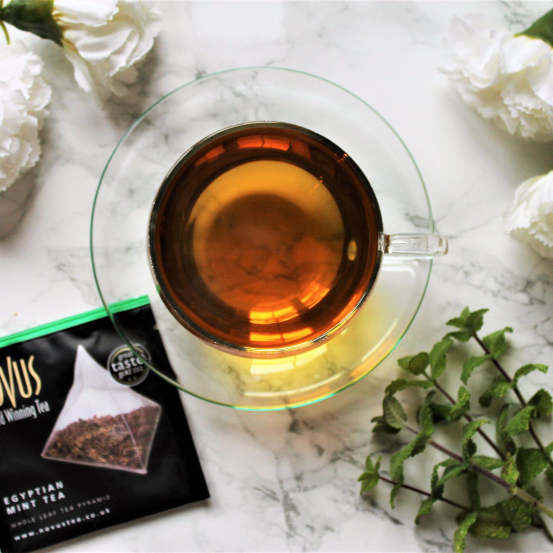 Novus Egyptian Mint Tea Review