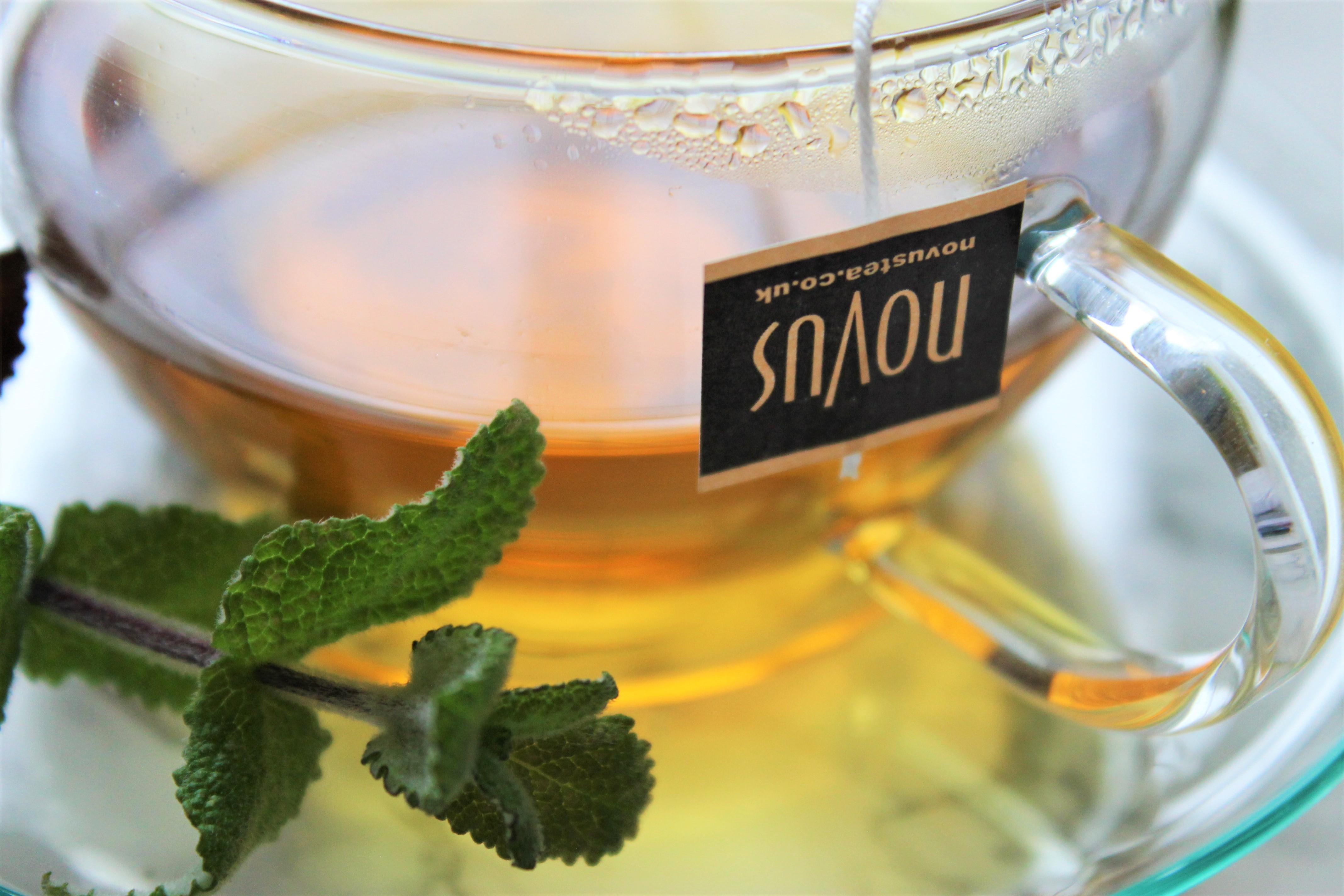 novus mint tea in teacup