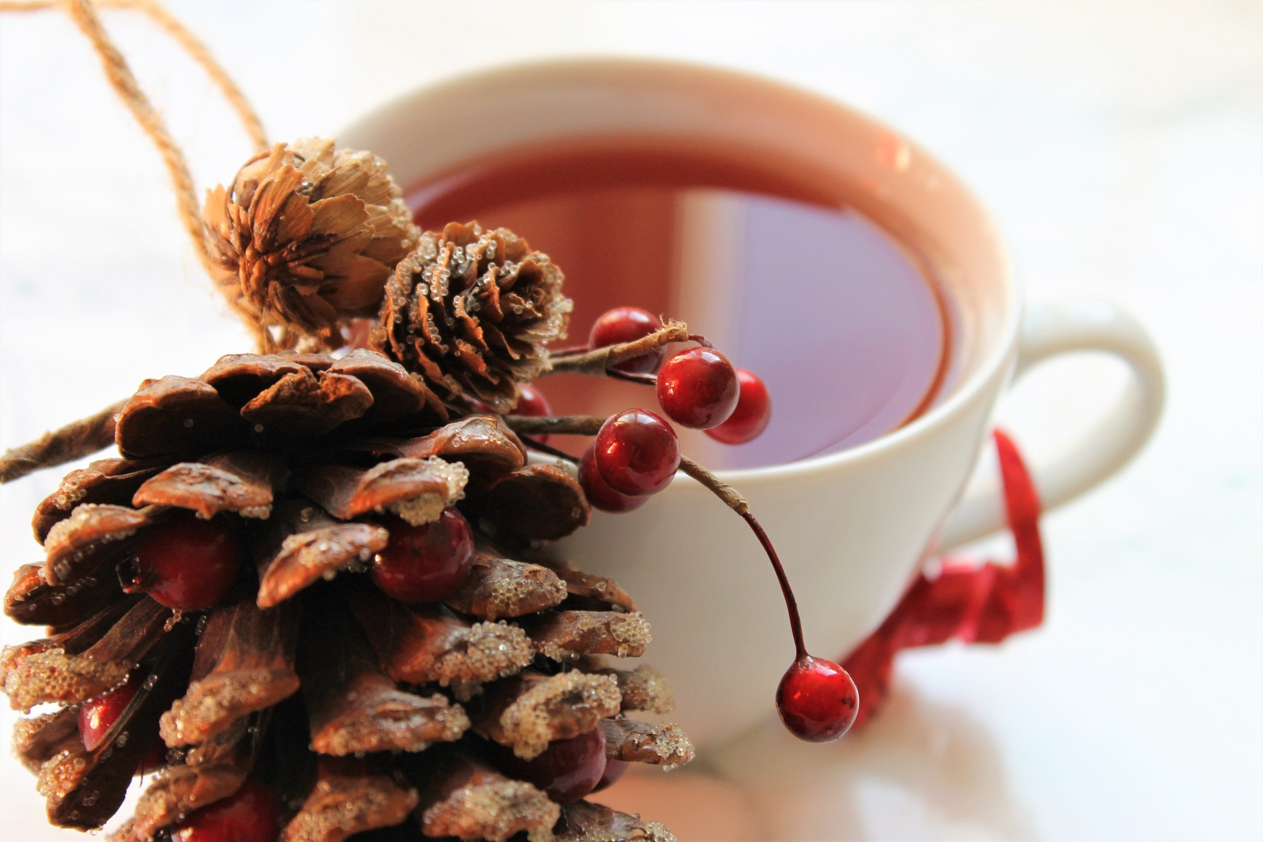 adagio christmas toddy tea