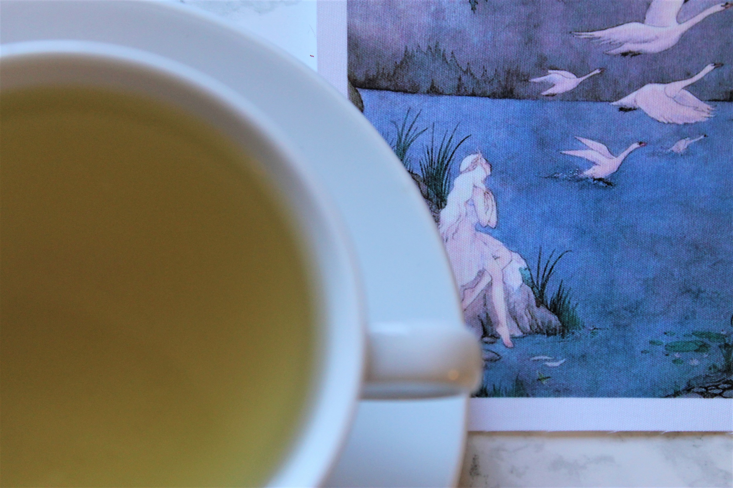 adagio teas christmas chai