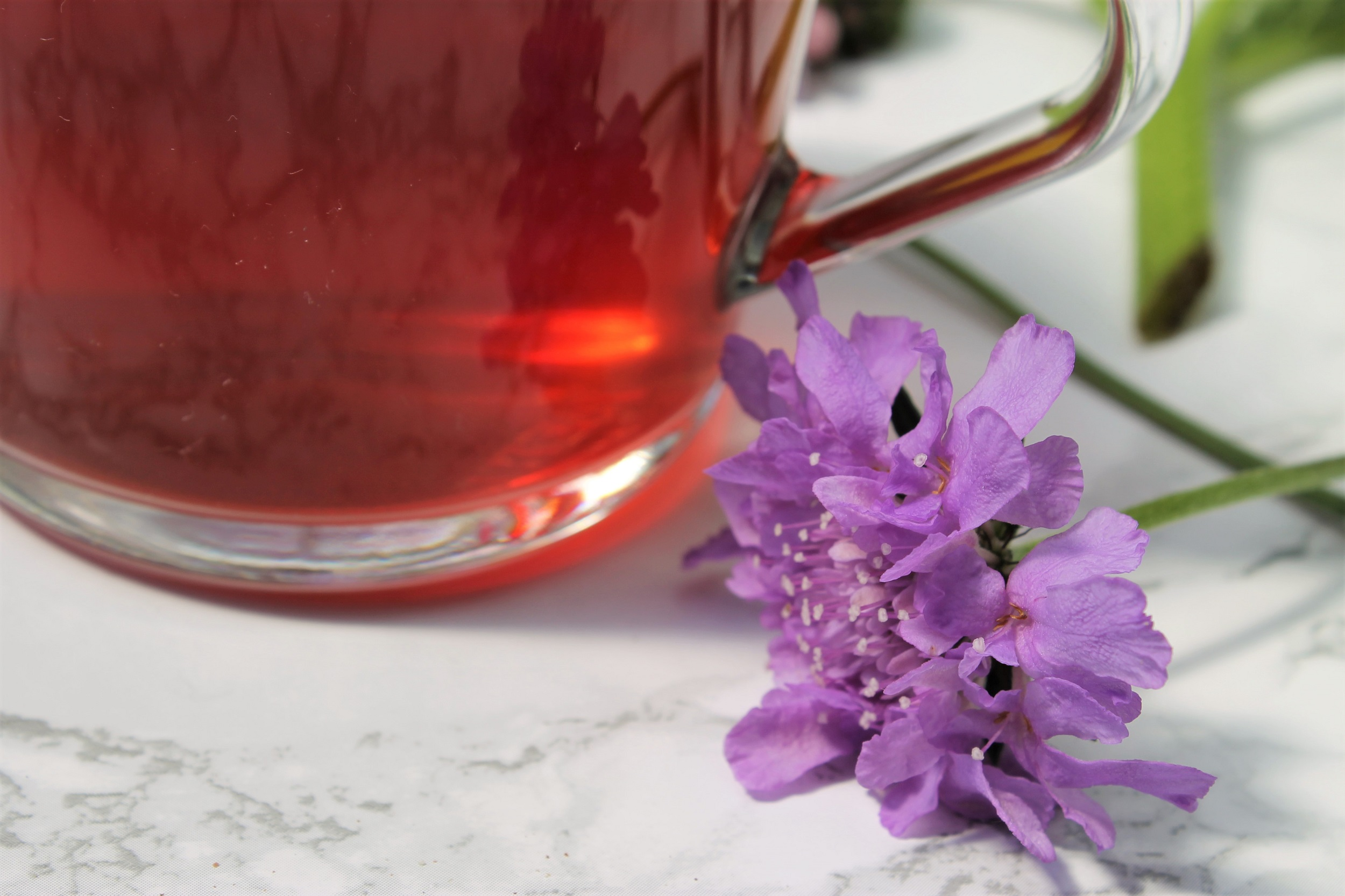 flowers and fruit tea image
