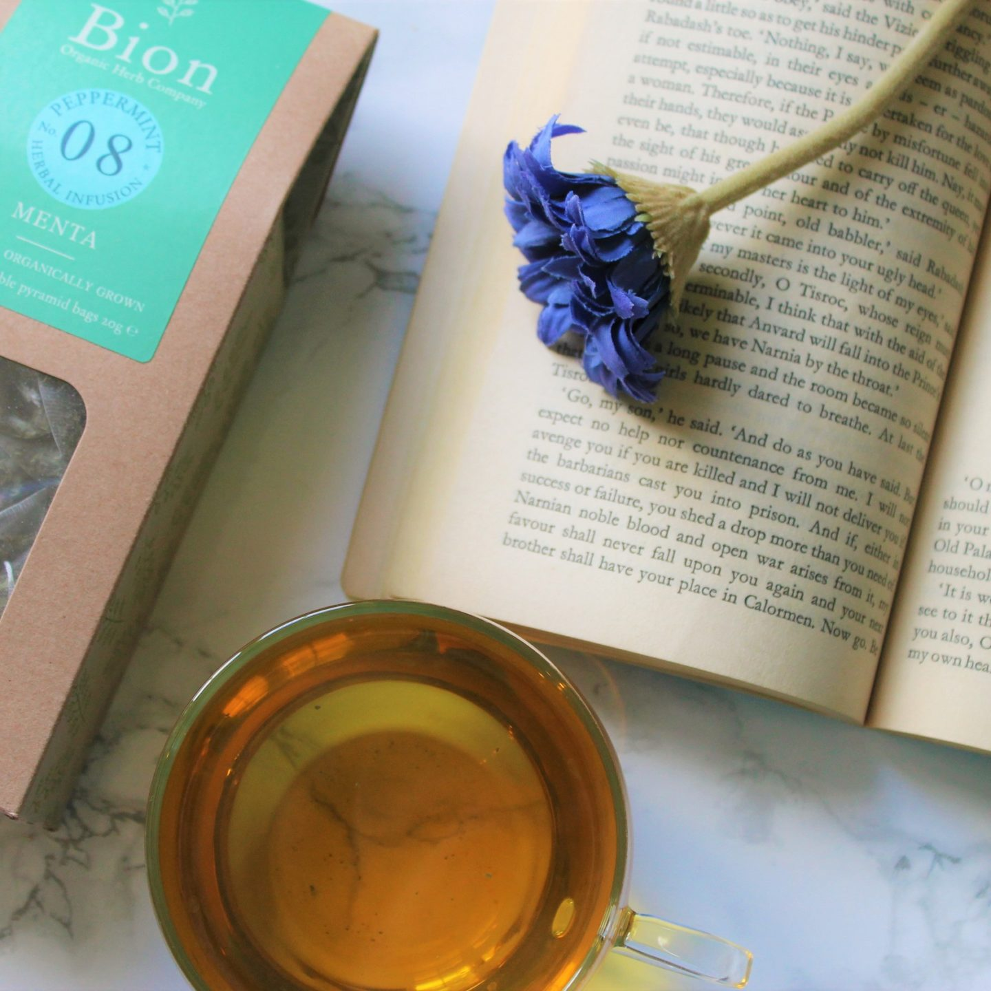 Bion Peppermint Tea Review