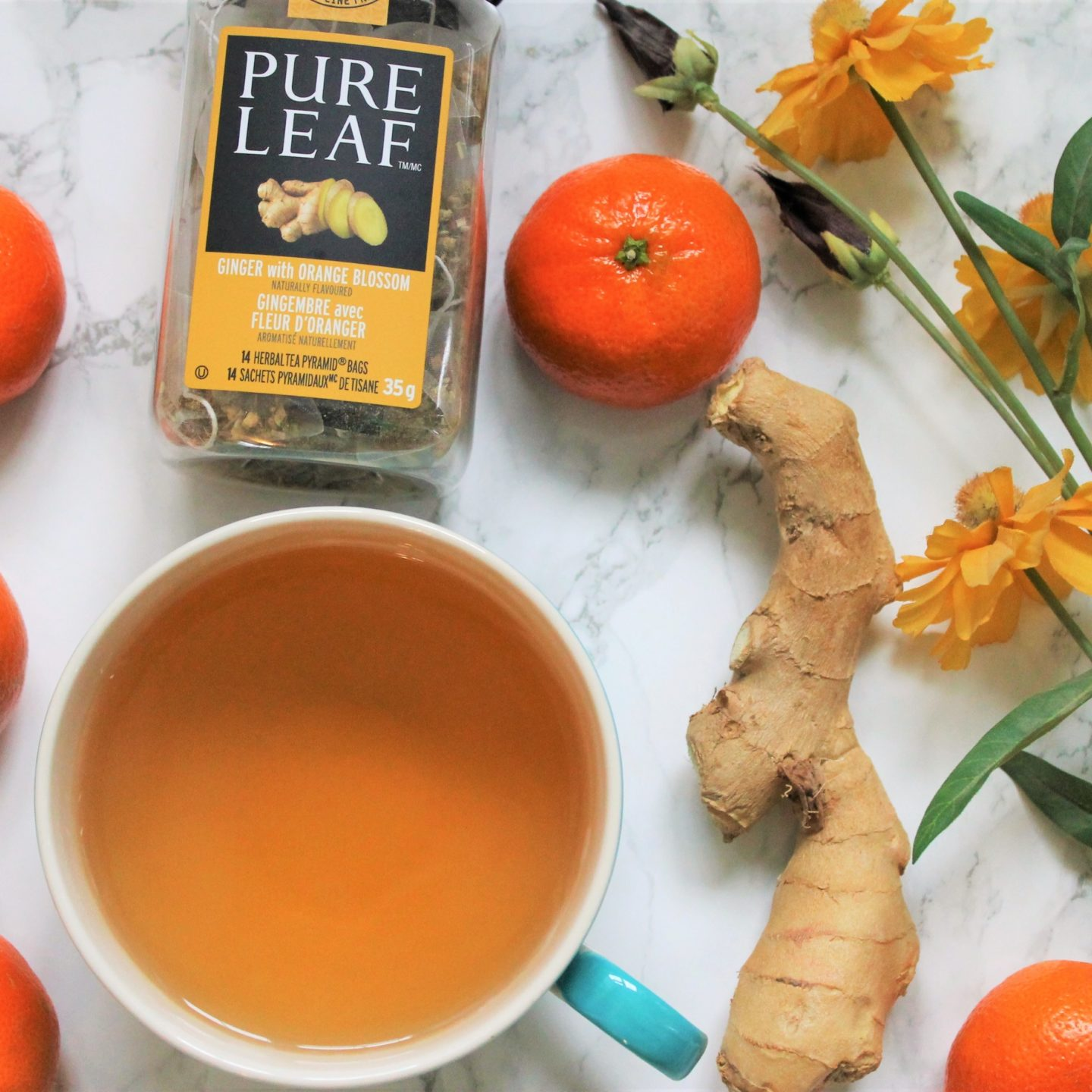 Pure Leaf Ginger with Orange Blossom Tea Review