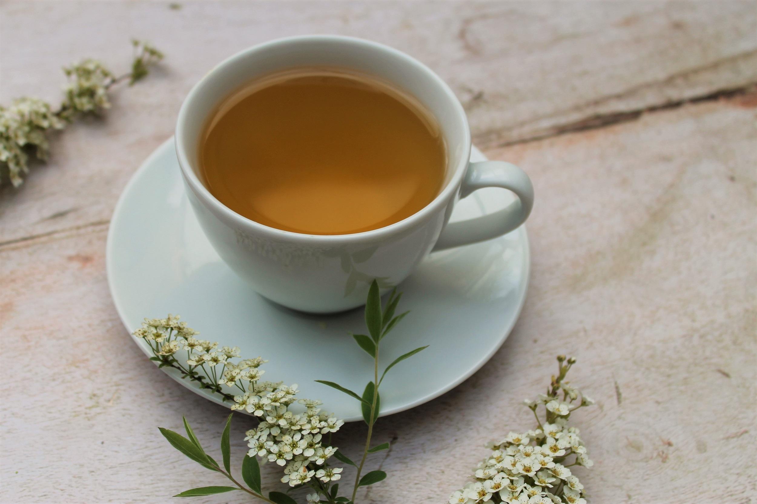 pure leaf green jasmine tea photography
