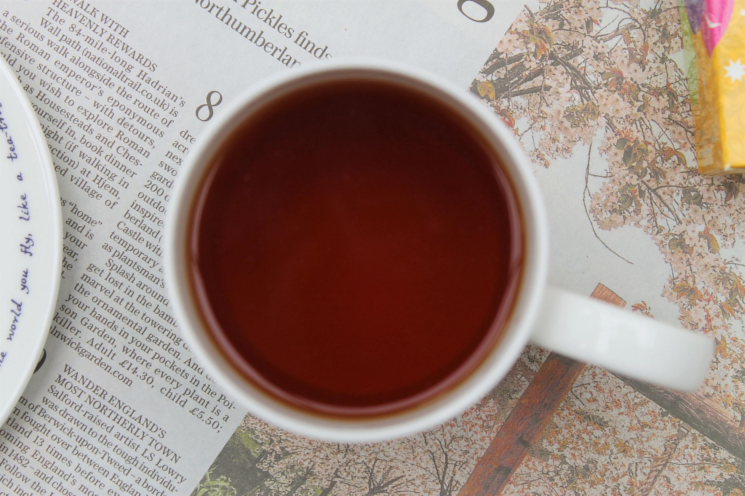berry savoury pie in mug