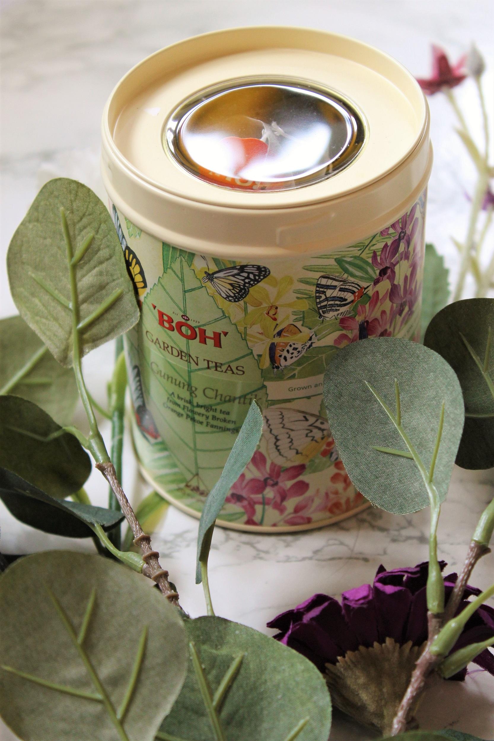 boh garden teas tea caddy