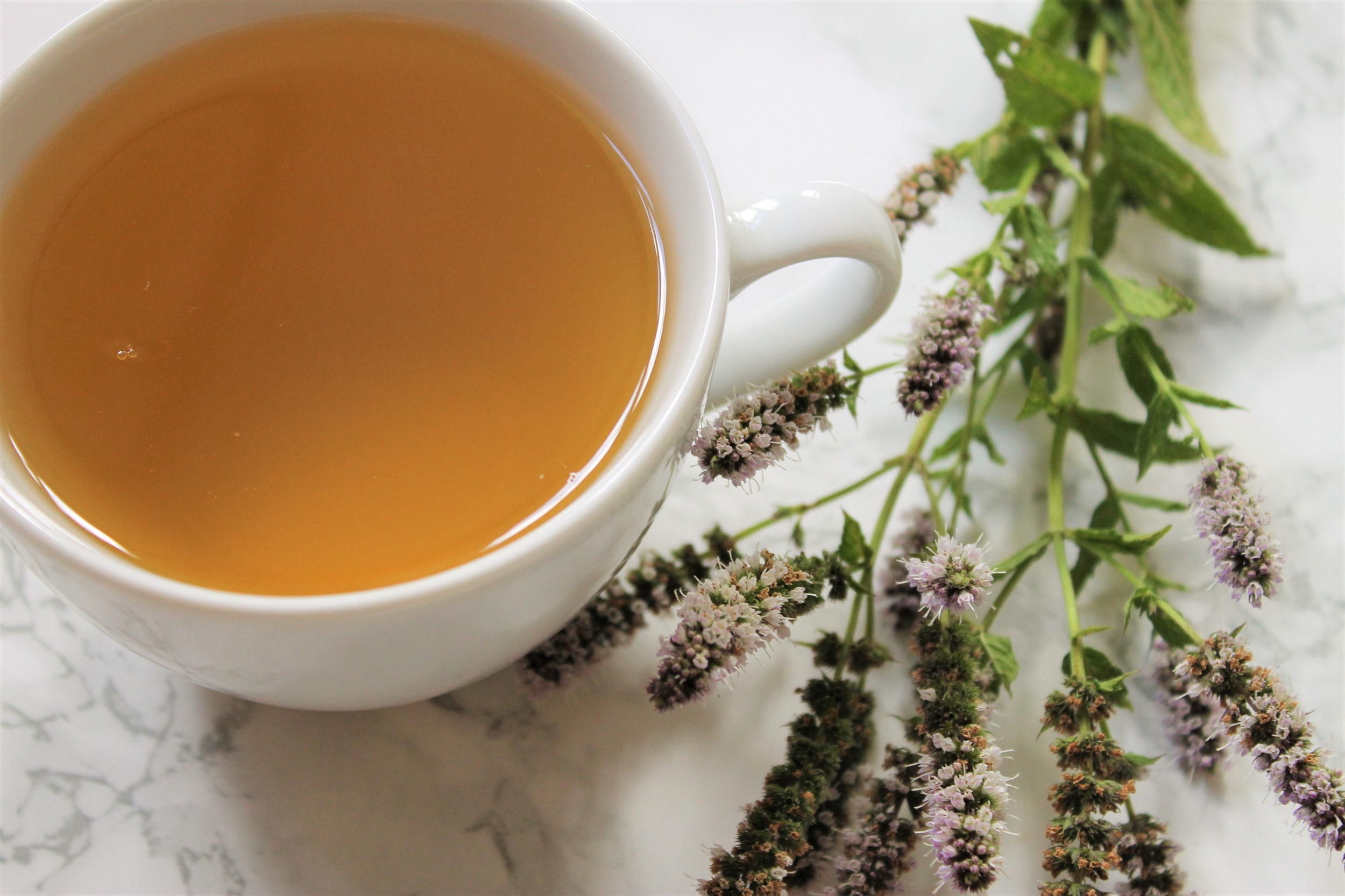 basilur leaf of ceylon green tea