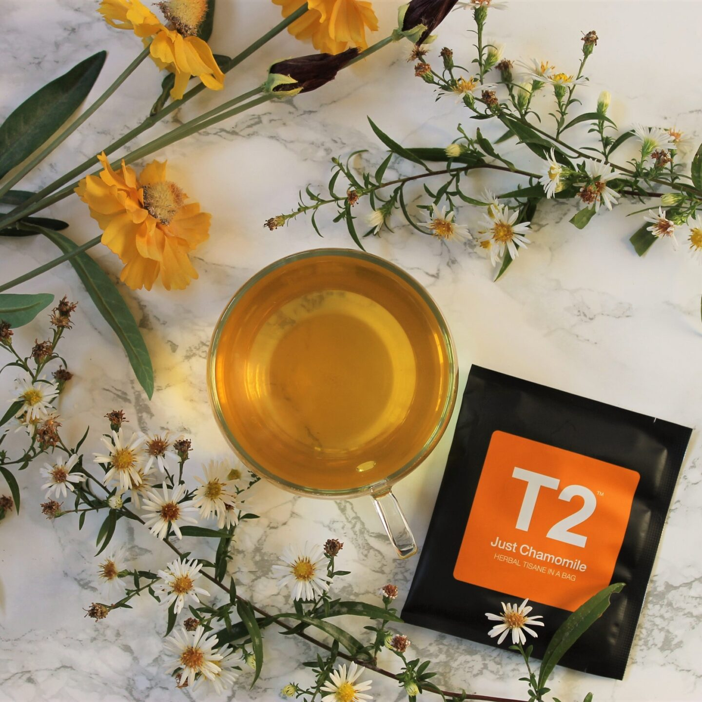 T2 Just Chamomile Tea Review