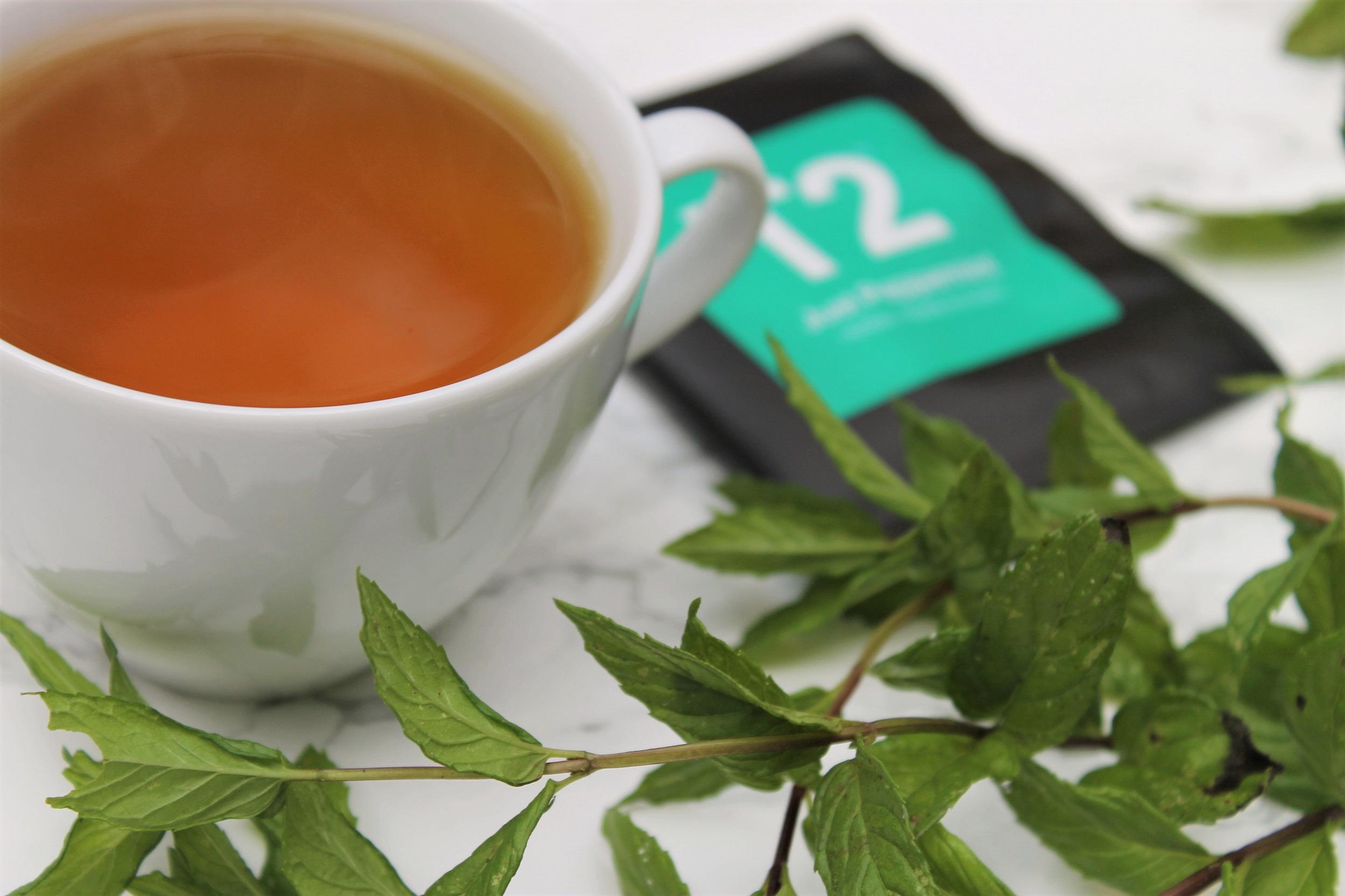 fresh peppermint tea in white teacup