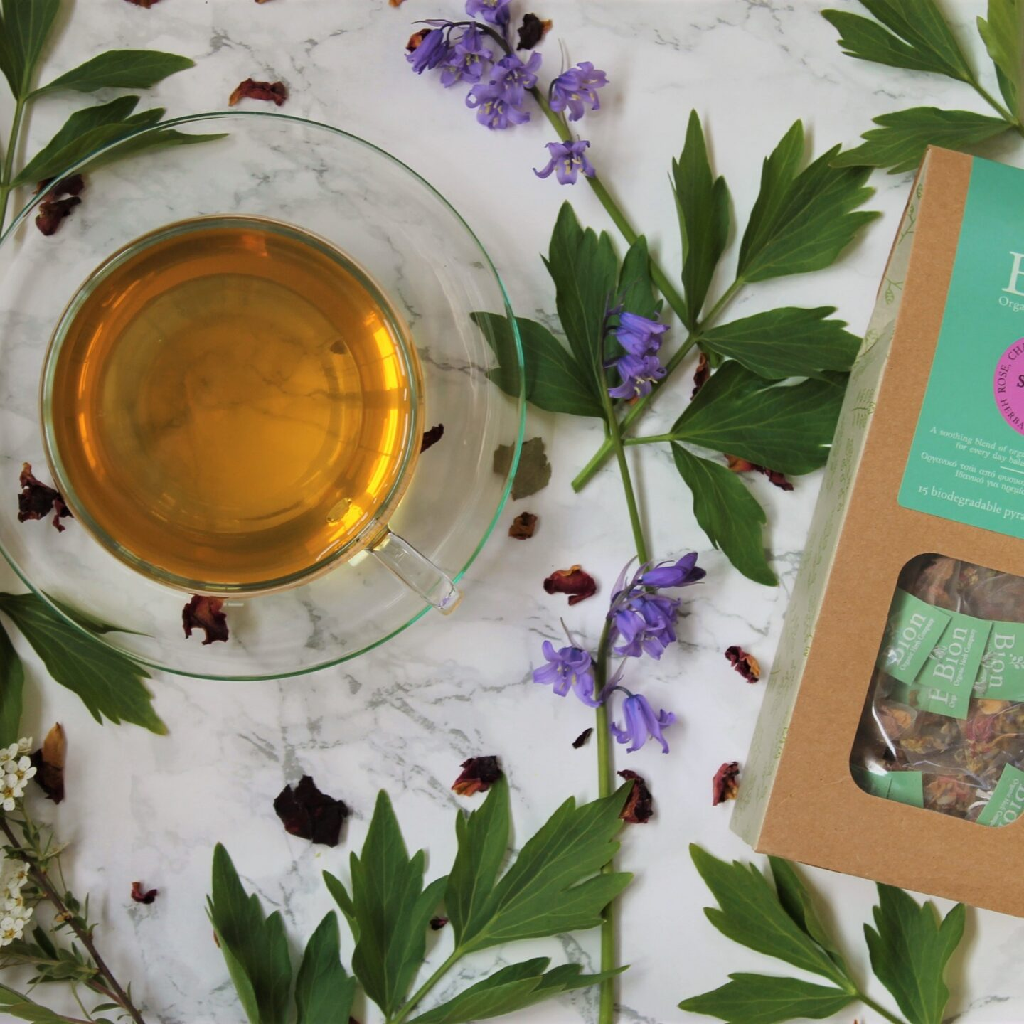 Bion Spring Floral Infusion Tea Review